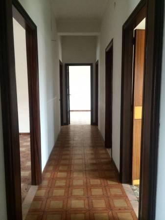 Appartamento in buone condizioni in affitto Rif. 4299219