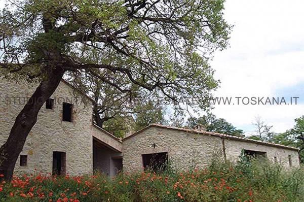 Rustico / Casale da ristrutturare in vendita Rif. 4263291