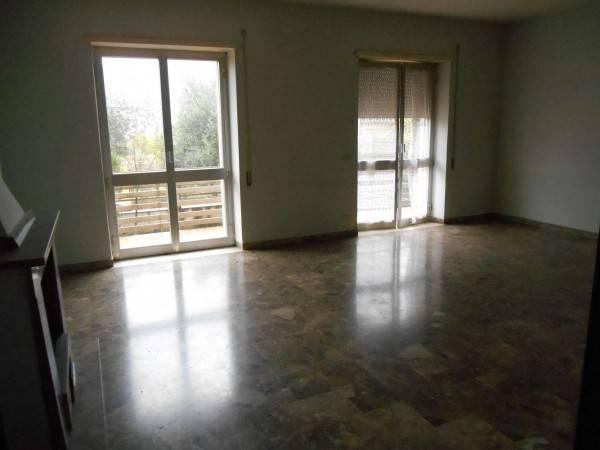 Appartamento in buone condizioni in affitto Rif. 4190521