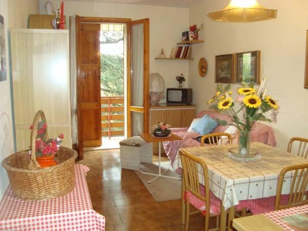 Appartamento in ottime condizioni arredato in vendita Rif. 4910444