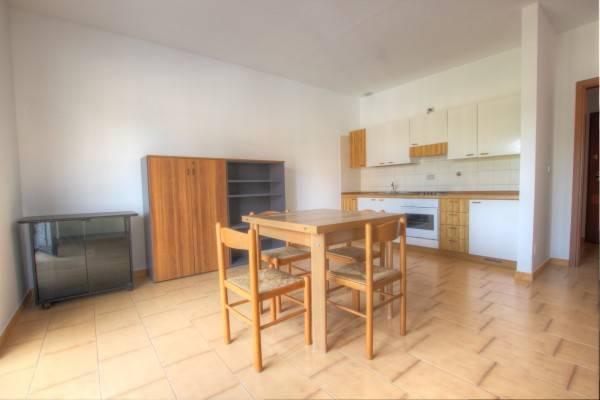 Appartamento in ottime condizioni parzialmente arredato in affitto Rif. 6840151