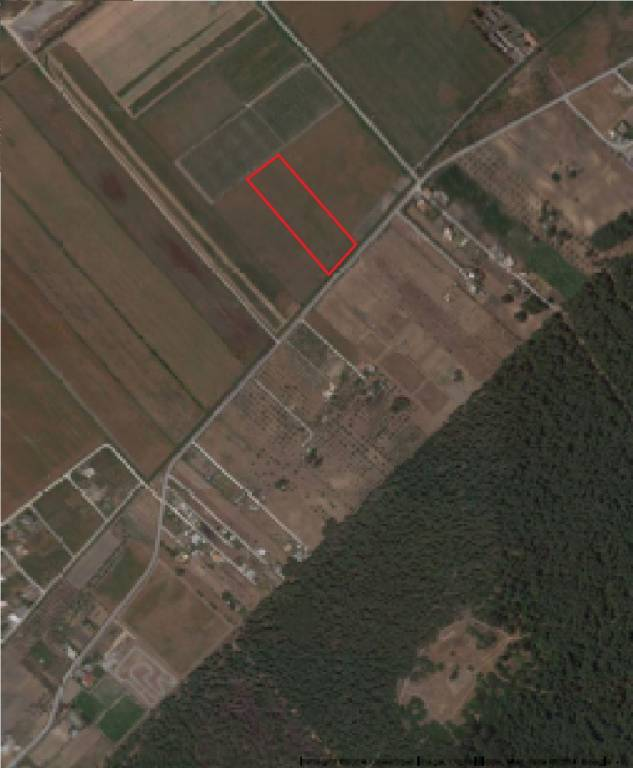 Terreno tipo agricolo a 3 km dal centro di Marina di Ginosa Rif. 4329055