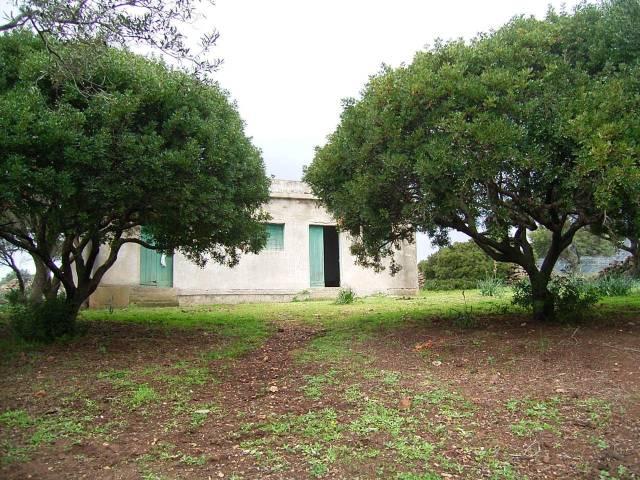 Terreno Agricolo in vendita a Orosei, 9999 locali, prezzo € 65.000   CambioCasa.it