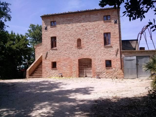 rustico cascina vendita montedinove di metri quadrati 230 prezzo 350000 nella zona di crocerossa rif 1627