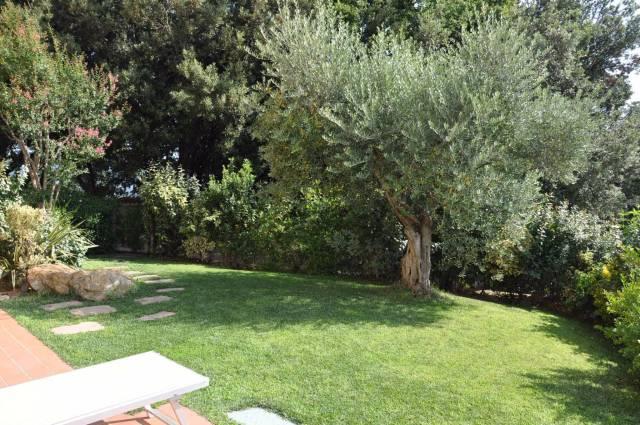 Bilocale Montescudaio La Villa 3