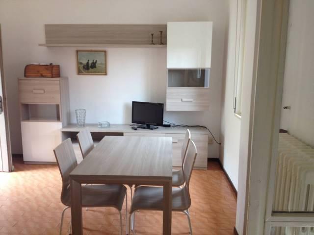 Appartamento in ottime condizioni arredato in affitto Rif. 4401259