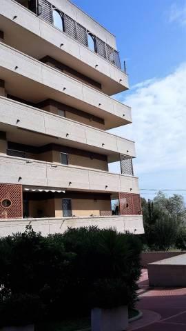 Bilocale in affitto a Roma in Via Erminio Macario
