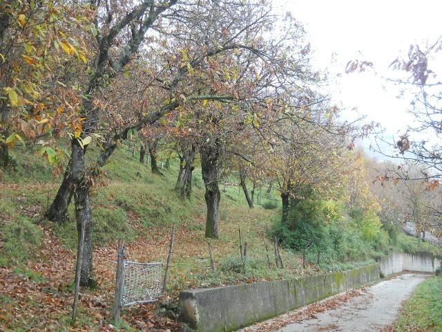 Terreno agricolo in Vendita a Santa Lucia di Serino Rif.9553422