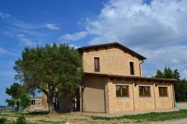 Azienda Agricola Spinetoli Rif. 4482563