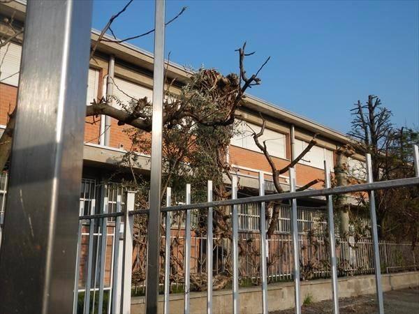 ZOLA - ZONA INDUSTRIALE - UFFICI - Zola Predosa