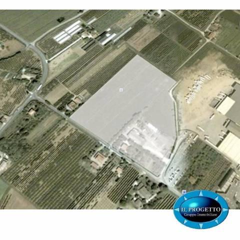 Terreno commerciale in Vendita a Cesena: 120000 mq  - Foto 1