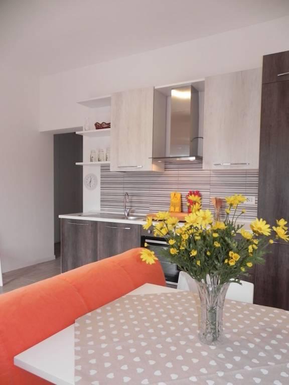 Appartamento in ottime condizioni arredato in affitto Rif. 7766954