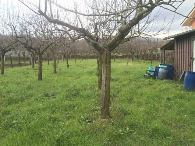Terreno agricolo in Vendita a San Michele di Serino Rif.9553427