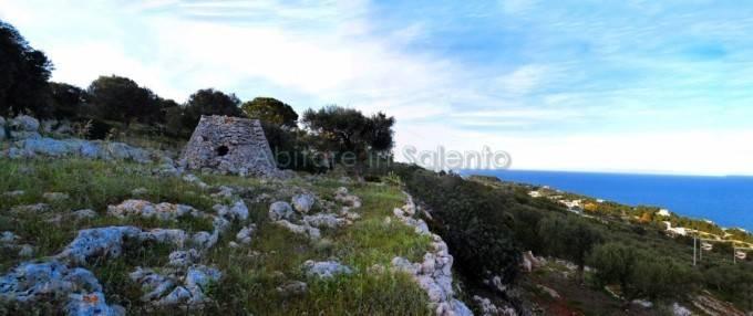 Terreno Agricolo in vendita a Gagliano del Capo, 9999 locali, prezzo € 120.000 | CambioCasa.it