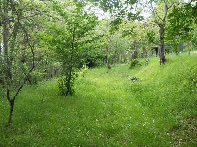 Terreno agricolo in Vendita a Santa Lucia di Serino Rif.9553429