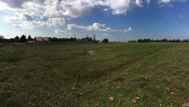 Terreno Agricolo in vendita a Corigliano d'Otranto, 9999 locali, prezzo € 33.000 | CambioCasa.it
