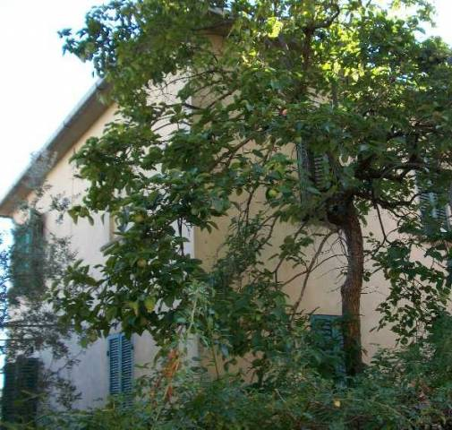Villa-Villetta Villa in Vendita a Monte San Savino