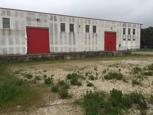capannone Affitto Foggia