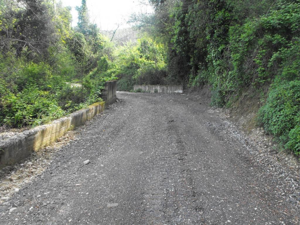 Terreno agricolo San Giovanni Teatino Rif. 4849761
