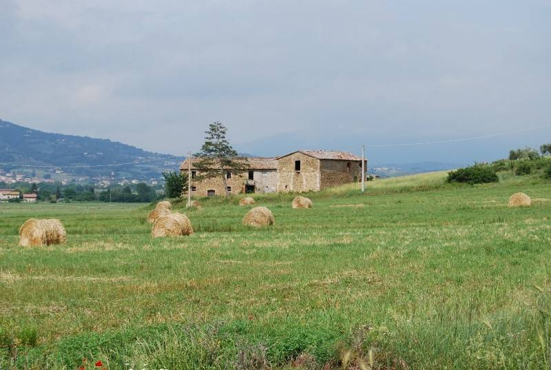 Rustico in Vendita a Magione Periferia: 5 locali, 728 mq