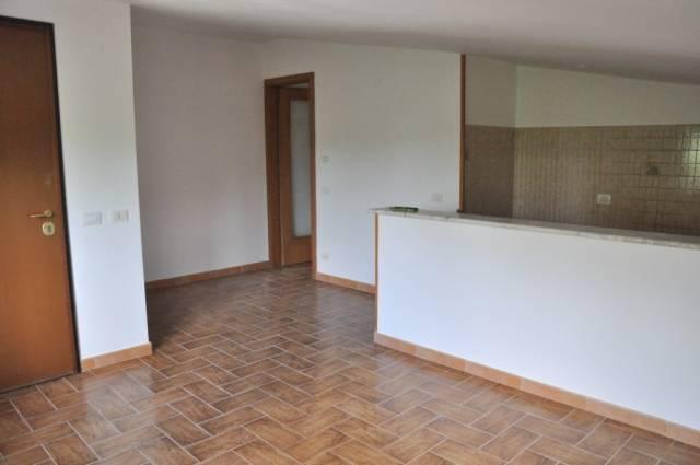 Appartamento in ottime condizioni in affitto Rif. 4235801