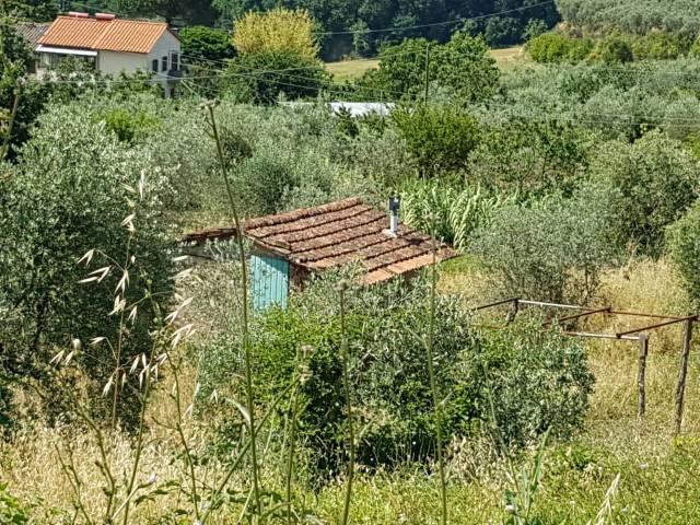terreno edificabile  in Vendita a Loro Ciuffenna