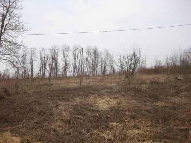 Terreno Agricolo in vendita a Cherasco, 9999 locali, prezzo € 20.000 | CambioCasa.it