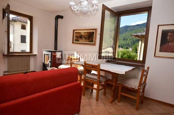 Appartamento in ottime condizioni arredato in vendita Rif. 4360622