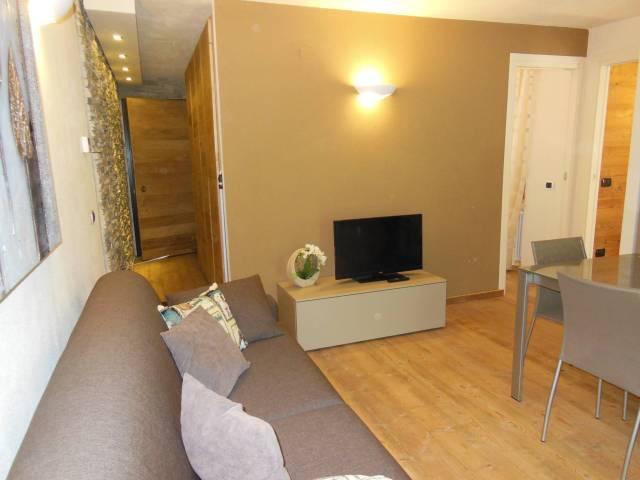 Appartamento in ottime condizioni arredato in affitto Rif. 4431904