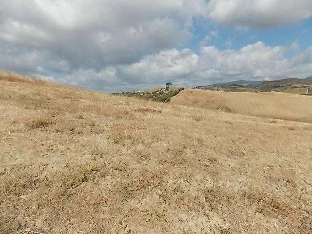 Terreno Agricolo in vendita a Riace, 9999 locali, prezzo € 30.000 | CambioCasa.it