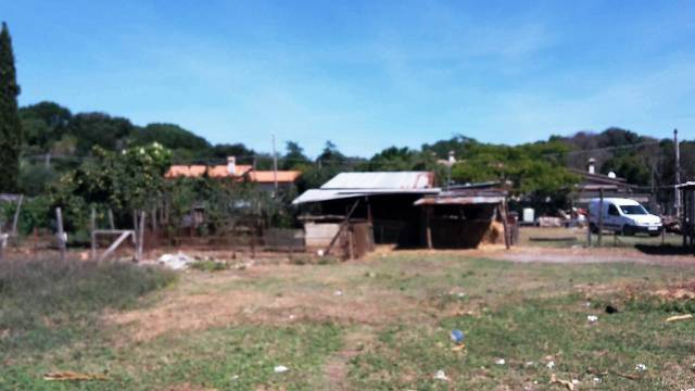 terreno  in Vendita a Anguillara Sabazia