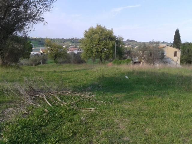 Terreno edificabile a Casemolino, Castellalto, Teramo (TE)