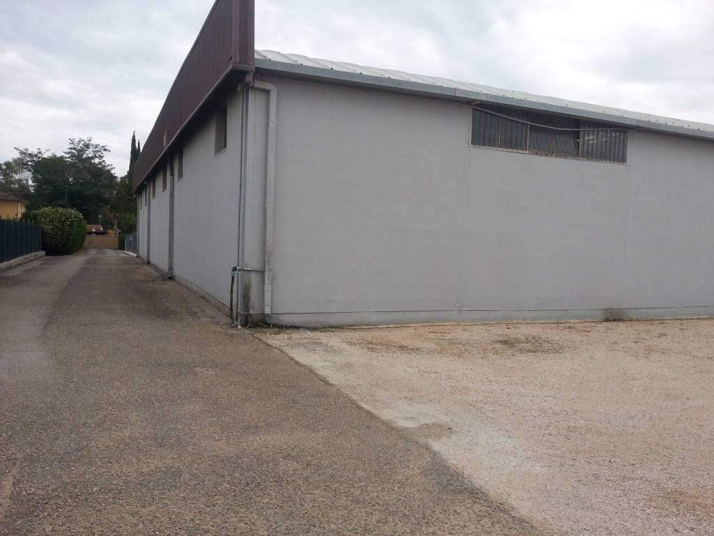 capannoni artigianali Rif. 4559893