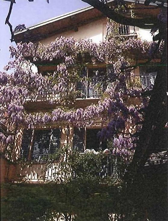 Appartamento in buone condizioni arredato in affitto Rif. 8561461