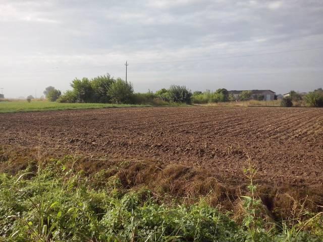 Terreno Commerciale in Vendita a Isola Rizza Rif.8094208