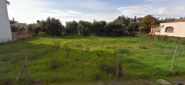 terreno edificabile  in Vendita a San Vero Milis