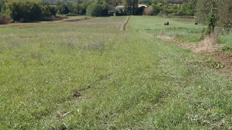 Terreno Agricolo in vendita a Caiazzo, 9999 locali, prezzo € 125.000 | CambioCasa.it