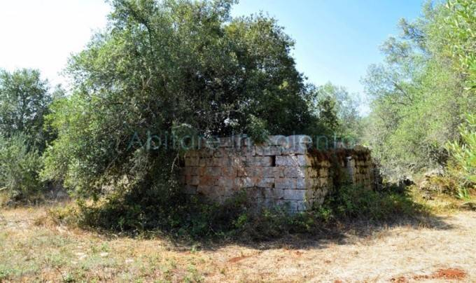 Terreno Agricolo in vendita a Andrano, 9999 locali, Trattative riservate | CambioCasa.it