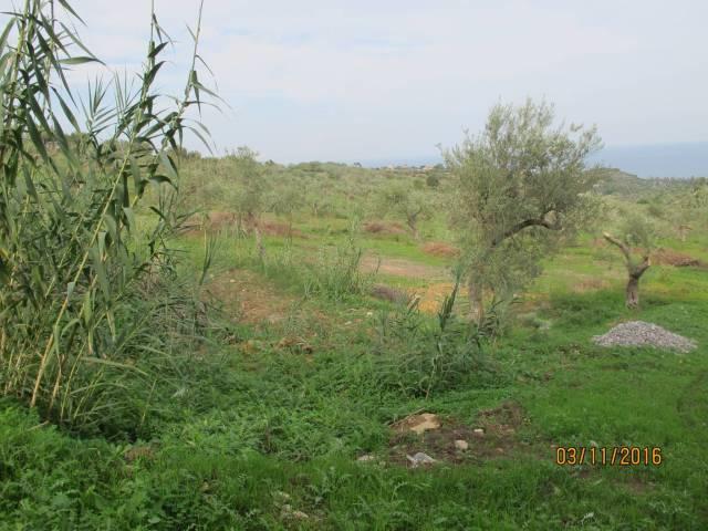 Terreno Edificabile Residenziale in vendita a Trabia, 9999 locali, prezzo € 700.000 | Cambio Casa.it