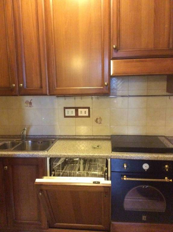 Appartamento in ottime condizioni arredato in affitto Rif. 8239590