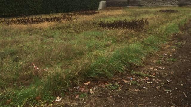 Terreno in vendita a Turbigo-https://res.getrix.it/media/ad/59081524/1/xs.jpg