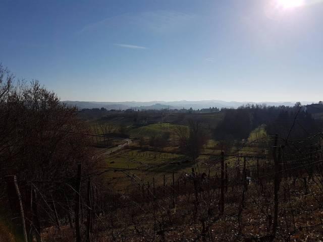 terreno agricolo vendita nizza monferrato di metri quadrati 13000 prezzo 45000