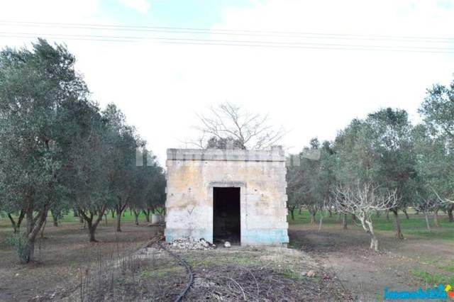 Terreno agricolo in C.da Gallana Rif. 4193686