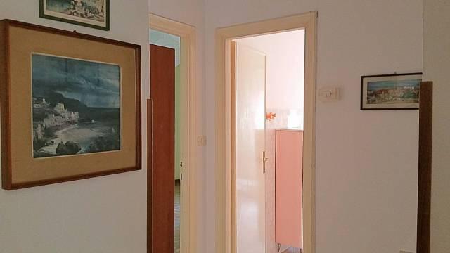 Appartamento VITERBO affitto   Santa Maria della Grotticella REALE studio immobiliare