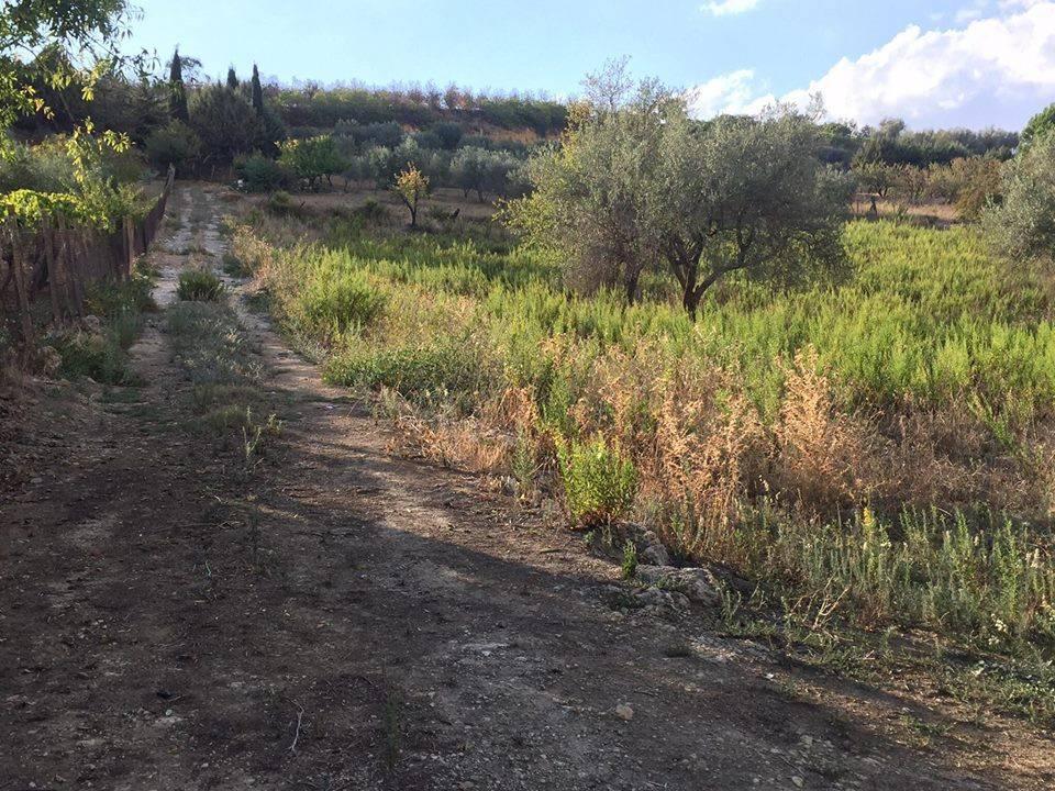 Canicatti Vendesi splendido terreno edificabile di 5300 mq