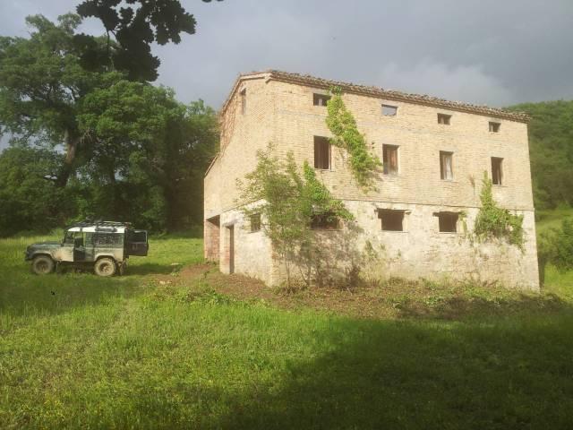 Terreno agricolo in vendita a Venarotta (AP)