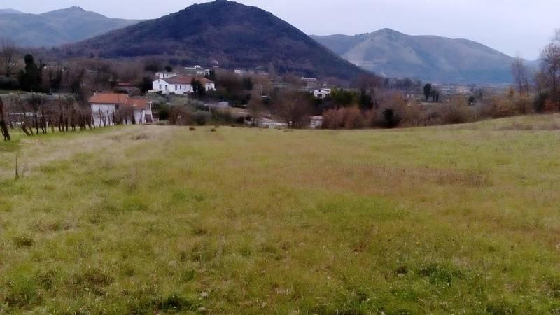 Terreno Agricolo in vendita a Piana di Monte Verna, 9999 locali, prezzo € 60.000 | CambioCasa.it