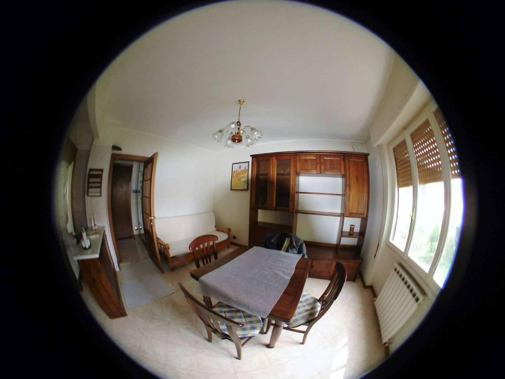 Appartamento in buone condizioni arredato in affitto Rif. 8607021