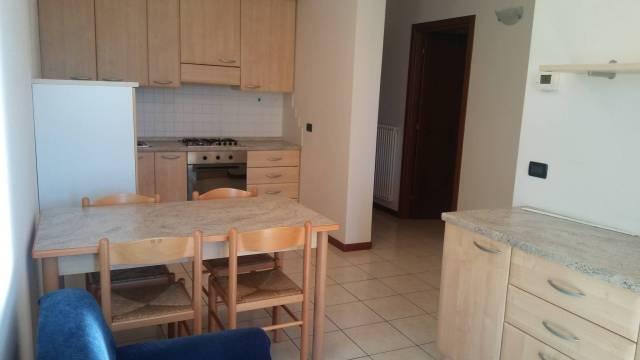 Appartamento in ottime condizioni arredato in affitto Rif. 4283370