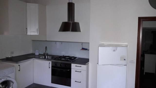 Appartamento in ottime condizioni arredato in affitto Rif. 5973053